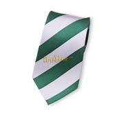 harry potter SLYTHERIN 100% silk man's and worman's ties