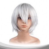 Silver Grey Short Cosplay Wig